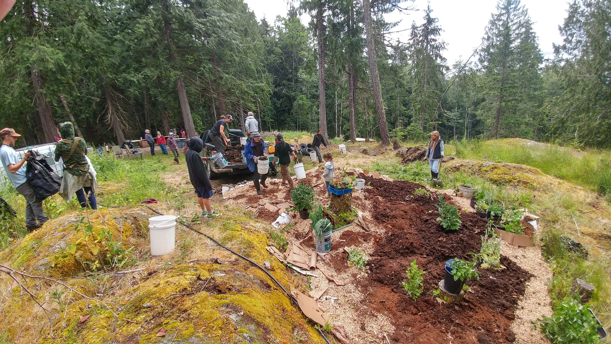 Permaculture Design Apprenticeship (Saltspring Island, BC)